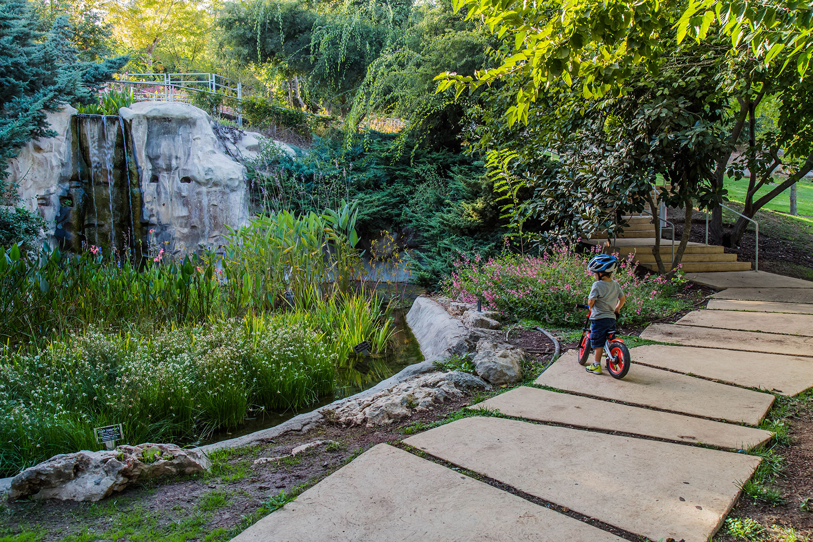 Discovery trail in the botanical gdn tsurnamal turner - Olive garden reservations policy ...